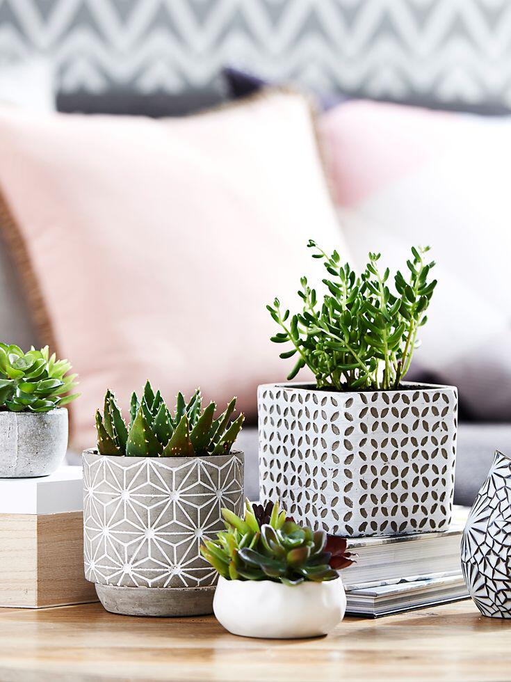 Living Room Table Centerpiece Tray