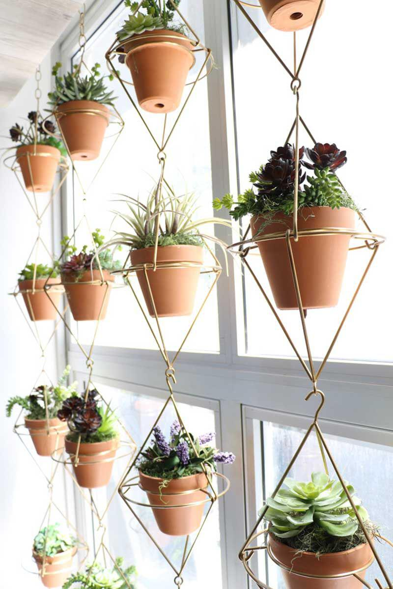 15 beautiful window plants ideas that will freshen up your house 7 - 15 beautiful window plants ideas that will freshen up your house